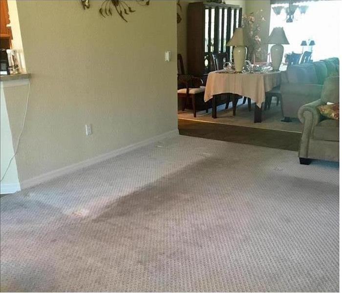 Living room carpet flooded from leaking pipe