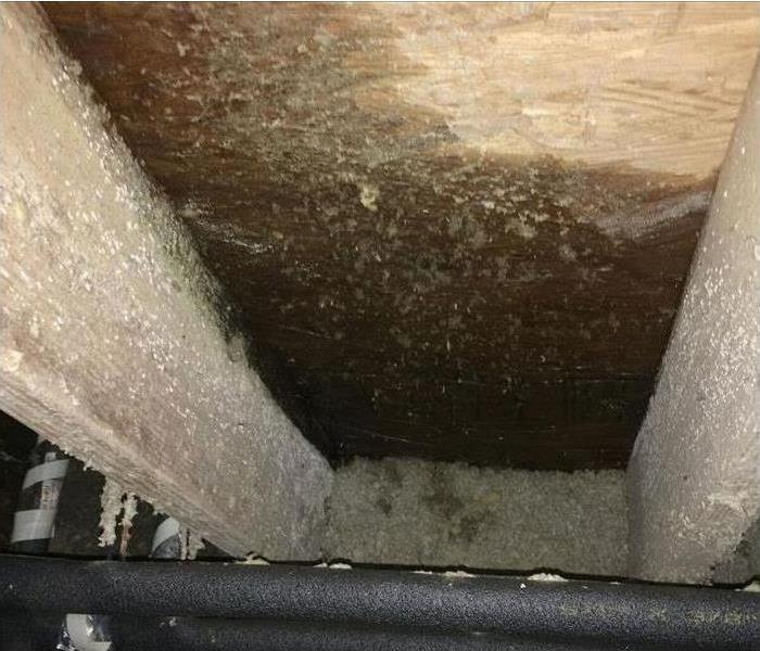 Water damaged crawlspace