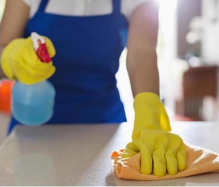 Woman Sanitizing Her Countertops